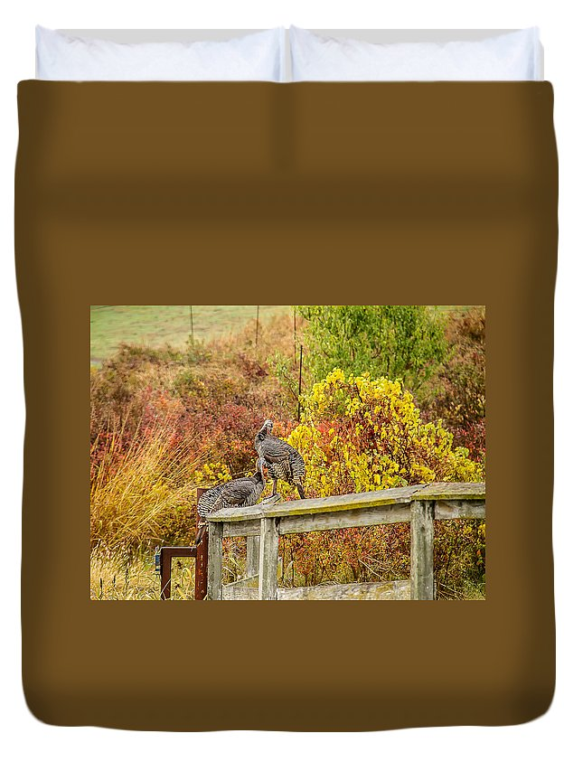 Fall Duvet Cover featuring the photograph A Fall Photo by Brian Williamson