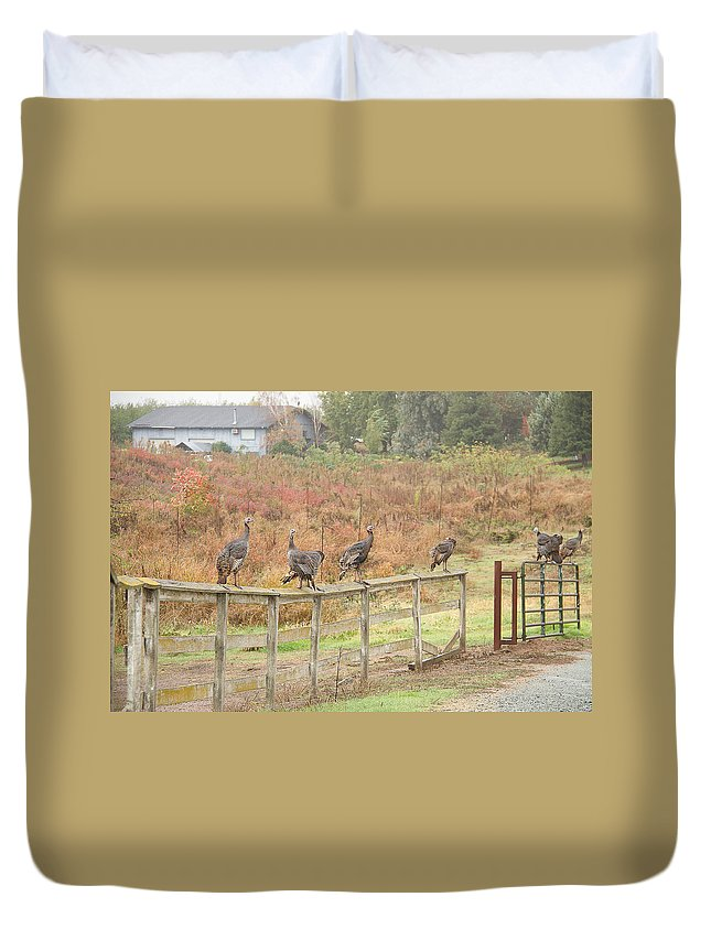 Fall Duvet Cover featuring the photograph A Fence Line Of Fall Turkeys by Brian Williamson