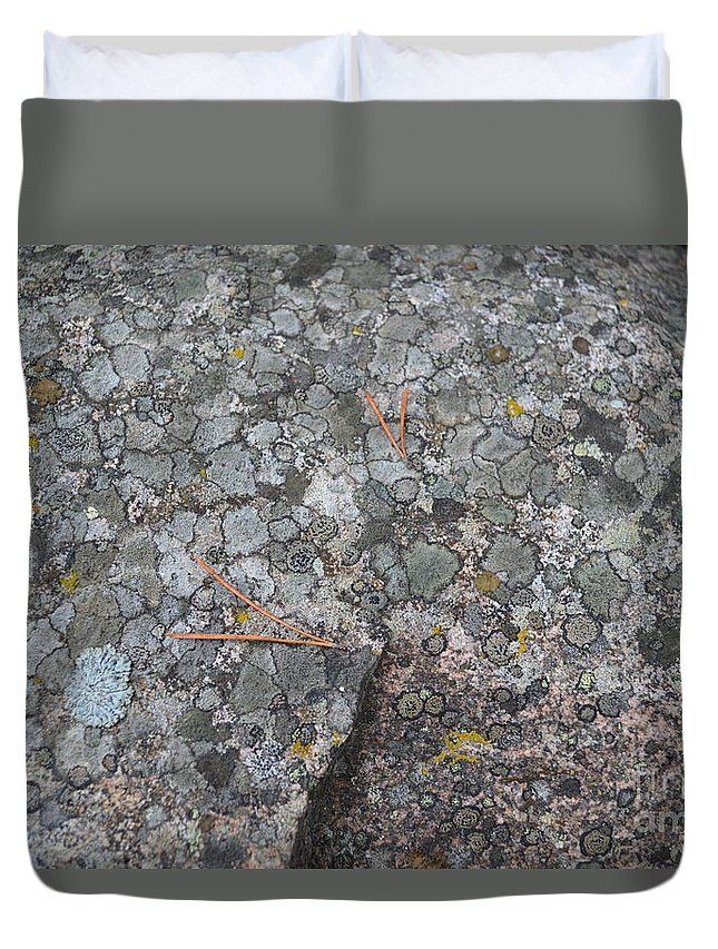 Pointers Duvet Cover featuring the photograph A Few Pointers by Brian Boyle