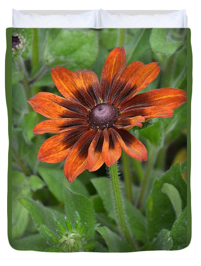Brown Flower Duvet Cover featuring the photograph A Flower Within A Flower by Patricia Twardzik
