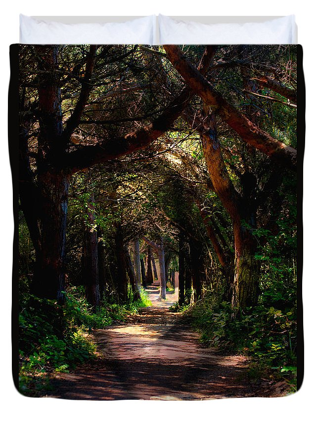 Forest Duvet Cover featuring the photograph A Forest Path -dungeness Spit - Sequim Washington by Marie Jamieson