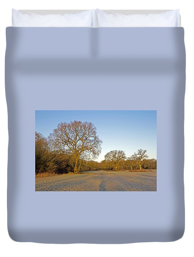 Trees On A Frosty Morning Duvet Cover featuring the photograph A Frosty Sunday Morning by Tony Murtagh