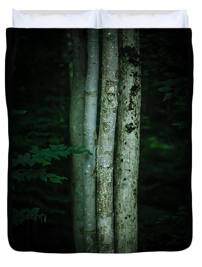 Trees Duvet Cover featuring the photograph A Gathering by Shane Holsclaw