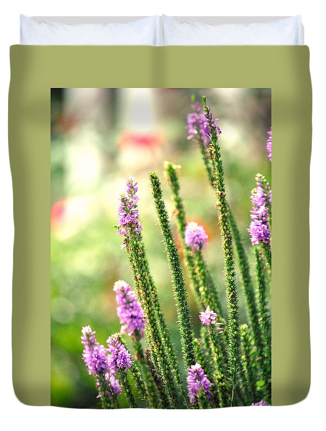Lavender Garden Duvet Cover featuring the photograph A Lavender Garden by Chastity Hoff