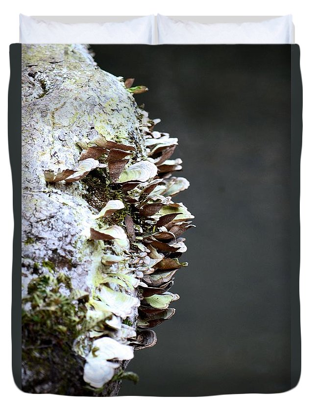 A Lichen Abstract 2013 Duvet Cover featuring the photograph A Lichen Abstract 2013 by Maria Urso
