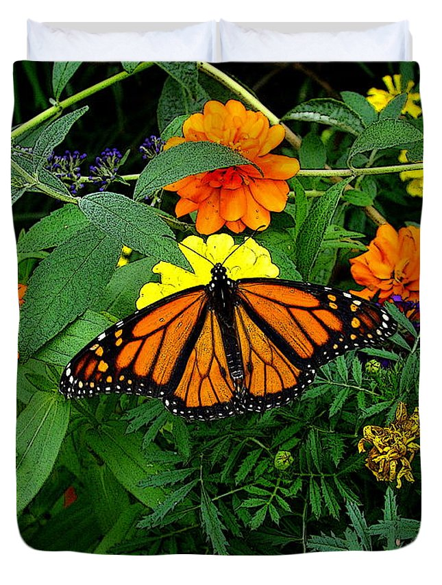 Fine Art Duvet Cover featuring the photograph A Monarchs Colors by Rodney Lee Williams