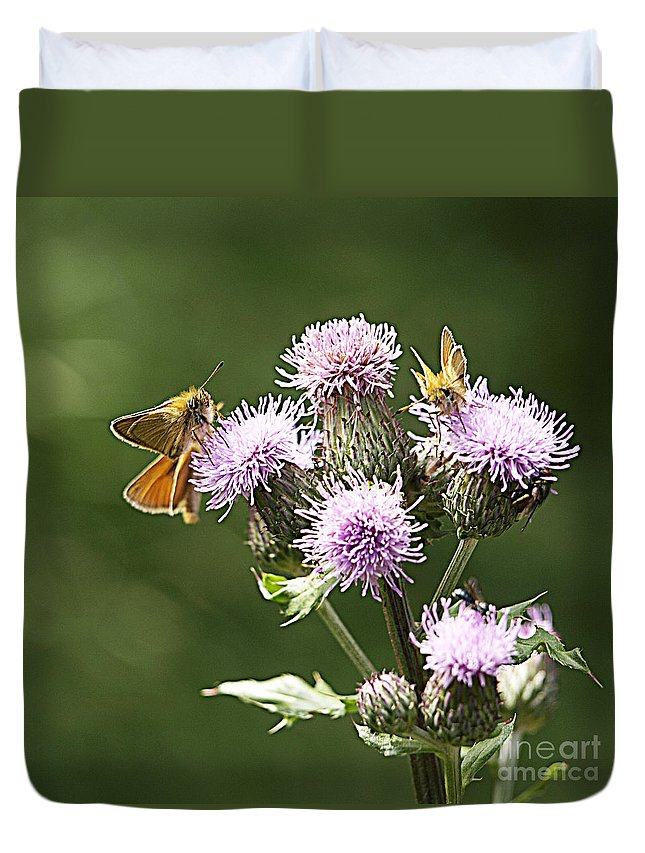 Moth Duvet Cover featuring the photograph A Moth's Feast by Arizona Lowe