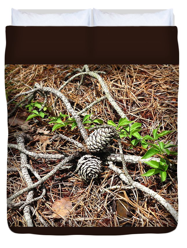 Pine Cones Duvet Cover featuring the photograph A Natural Gathering by Barbara McDevitt