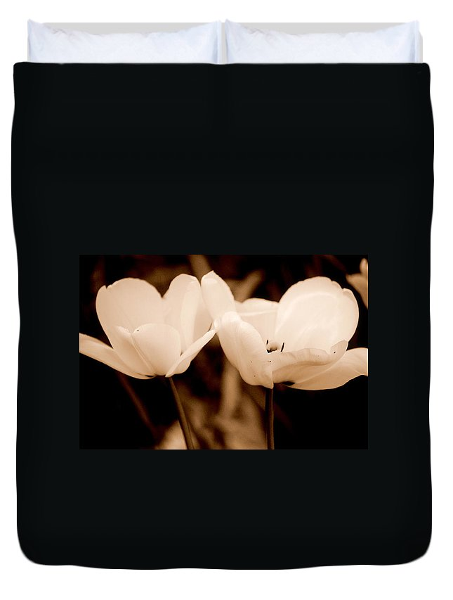 Tulip Duvet Cover featuring the photograph A Pair Of Tulips by Kathy Sampson