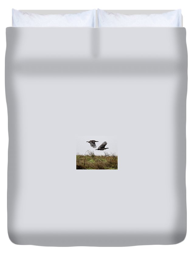Wild Turkeys Duvet Cover featuring the photograph A Pair Of Wild Turkeys by Brian Williamson