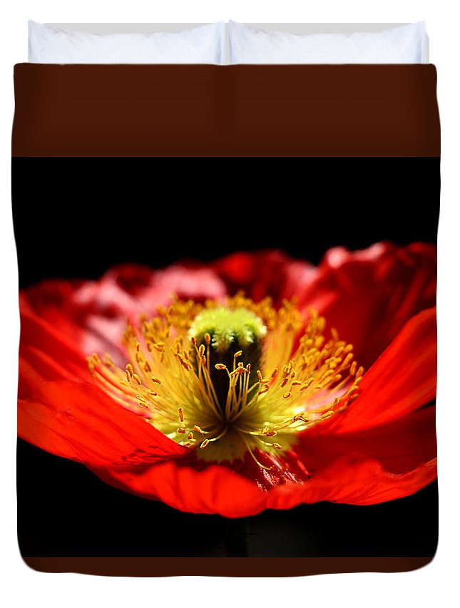 Nature Duvet Cover featuring the photograph A Passion For Life by Rory Sagner