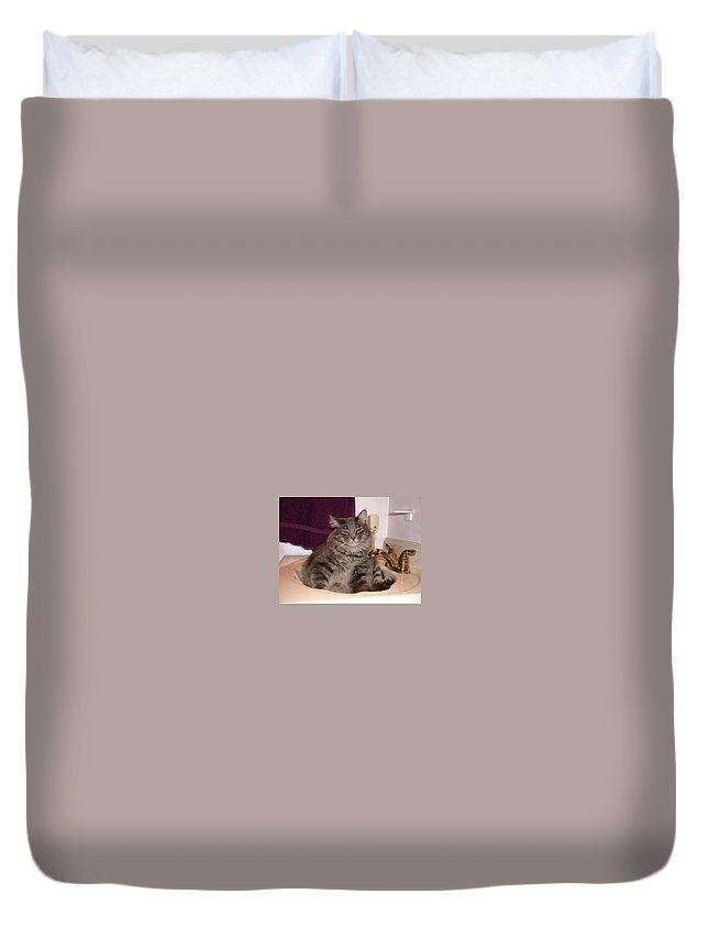 Cat Duvet Cover featuring the photograph A Place To Relax by Shane Bechler