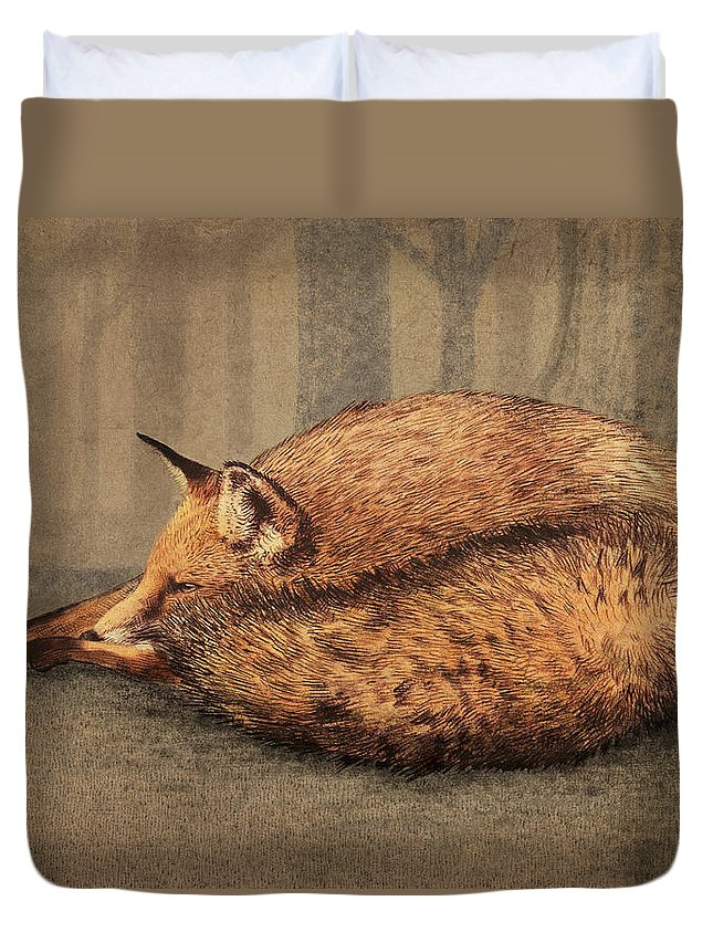 Fox Duvet Cover featuring the drawing A Quiet Place by Eric Fan