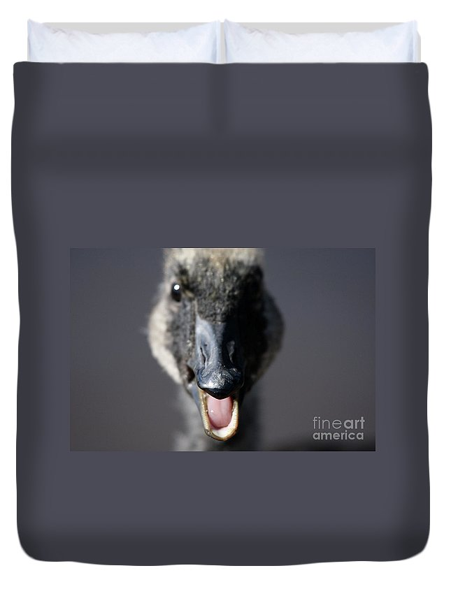 Canada Goose Duvet Cover featuring the photograph A Real Closeup by Karol Livote