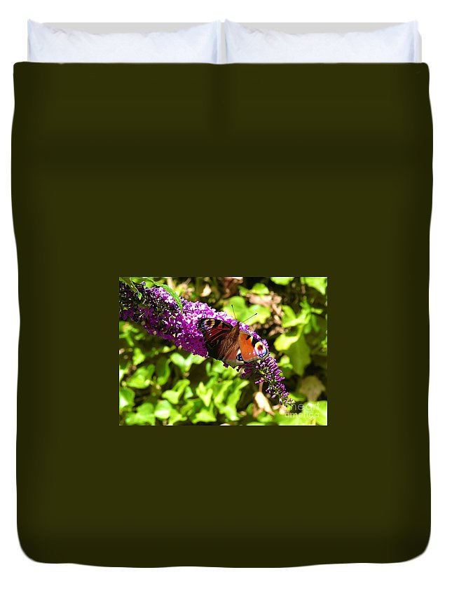 Butterflies Duvet Cover featuring the photograph A Red Admiral On A Purple Budlier by Joan-Violet Stretch