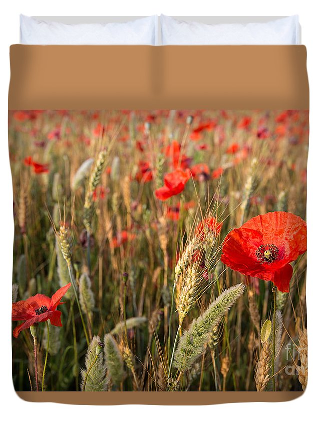 Agriculture Duvet Cover featuring the photograph A Red Dressed Beauty by Hannes Cmarits