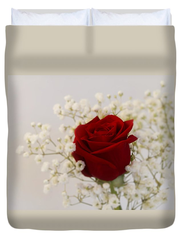 Rose Duvet Cover featuring the photograph A Rose Is A Rose by Kim Hojnacki