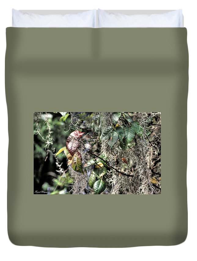 Florida Duvet Cover featuring the photograph A Sign Of Fall by Debra Forand