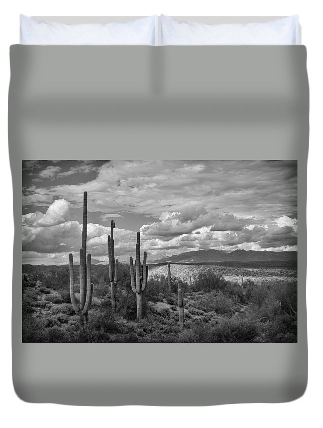Arizona Duvet Cover featuring the photograph A Sonoran Winter Day In Black And White by Saija Lehtonen