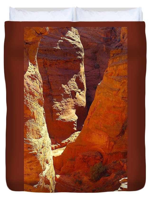 Landscape Duvet Cover featuring the photograph A Sun Soaked Dry Gulch by Jeff Swan