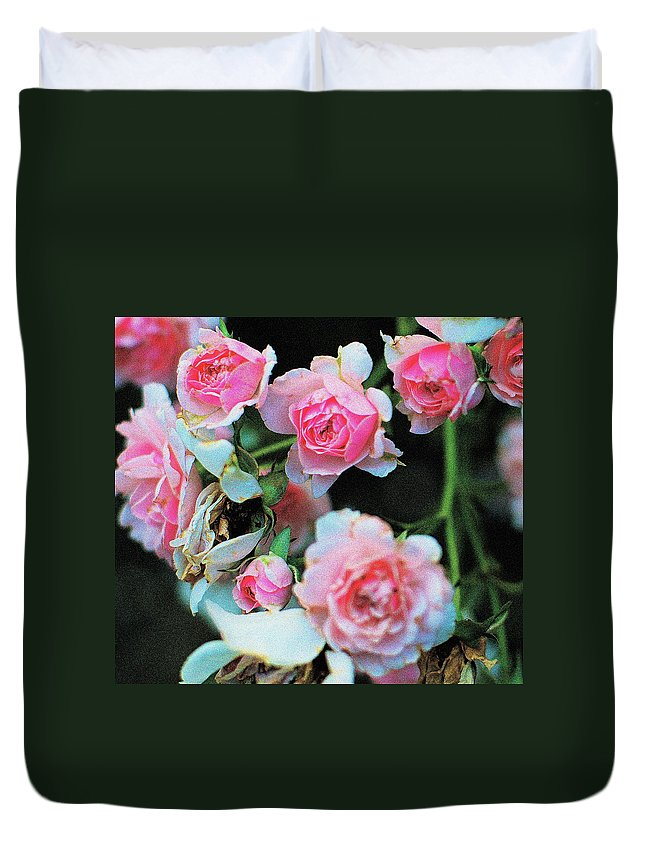 Roses Duvet Cover featuring the photograph A Time For Roses by Ira Shander