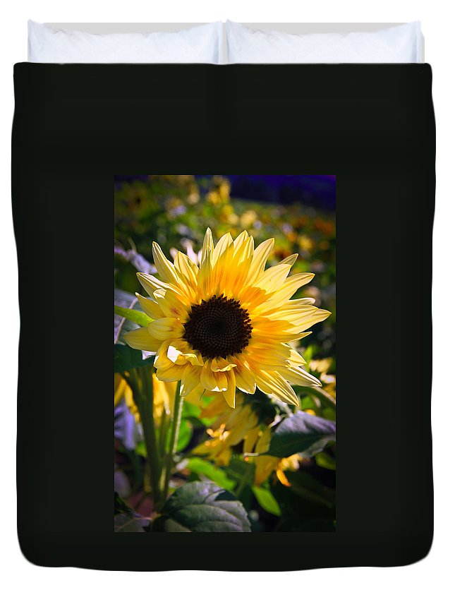 Sunflower Duvet Cover featuring the photograph A Touch Of Sunflower by Athena Mckinzie
