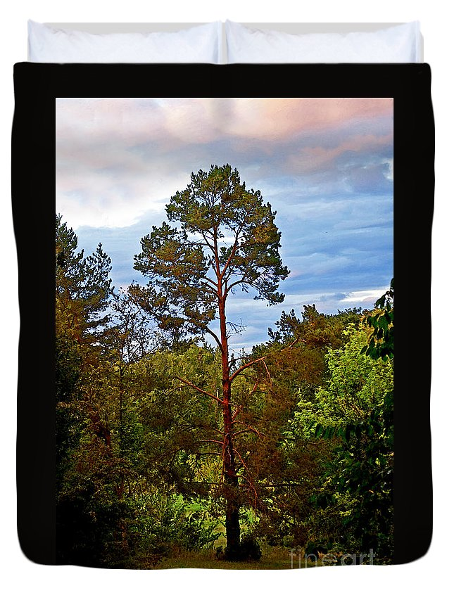 Tree Duvet Cover featuring the photograph A Tree by Gwyn Newcombe