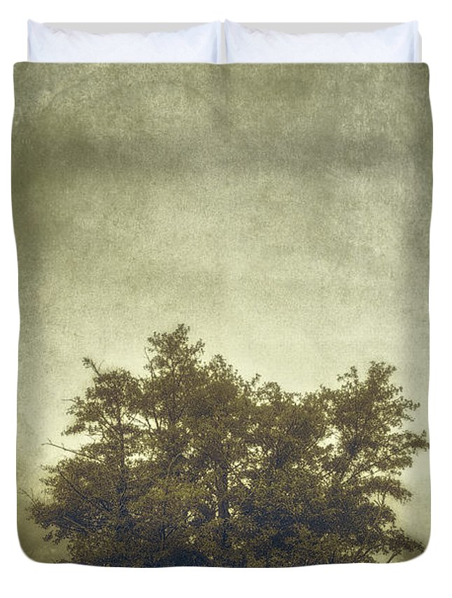 Tree Duvet Cover featuring the photograph A Tree In The Fog 2 by Scott Norris