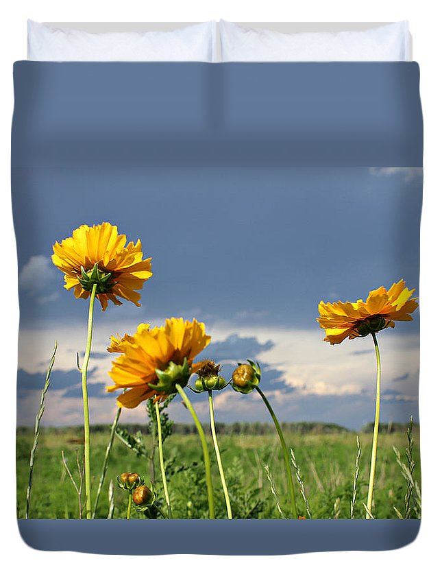 Bug Duvet Cover featuring the photograph A Visit From A Bug by Jackie Novak