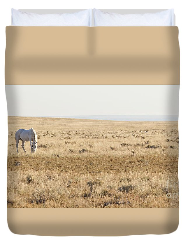 America Duvet Cover featuring the photograph A White Mustang Feeds On Dry Grass Fields Of Arizona by B Christopher
