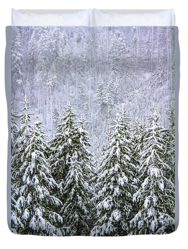 Winter Duvet Cover featuring the photograph A Winter Scene by Carolyn Fox