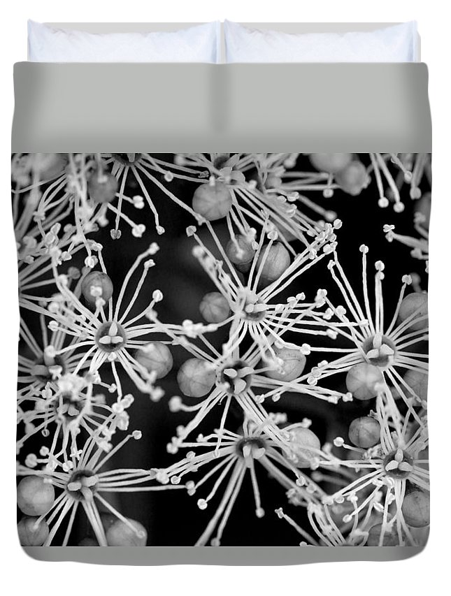 Blossom Duvet Cover featuring the photograph Abstract Blossoms by Chevy Fleet