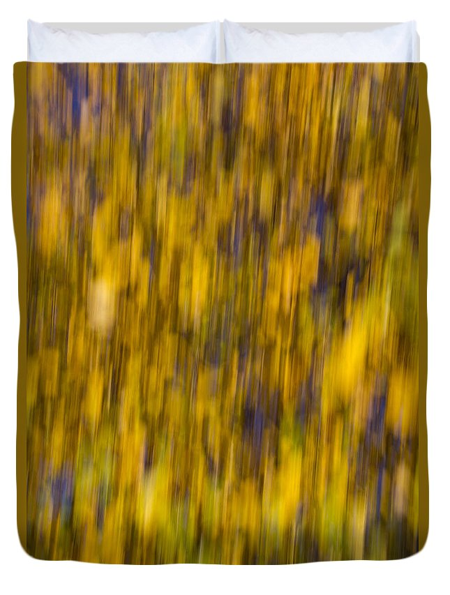 Autumn Duvet Cover featuring the photograph Abstract Of Autumn Gold by David Pyatt