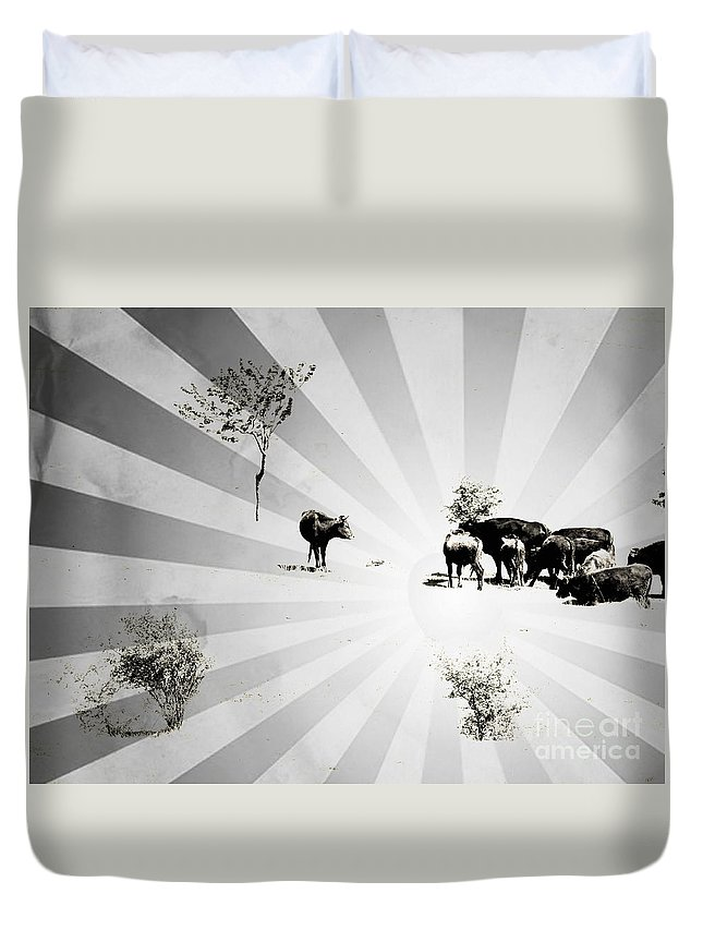 Beams Duvet Cover featuring the photograph Abstract Vintage Cows by Gabriela Insuratelu