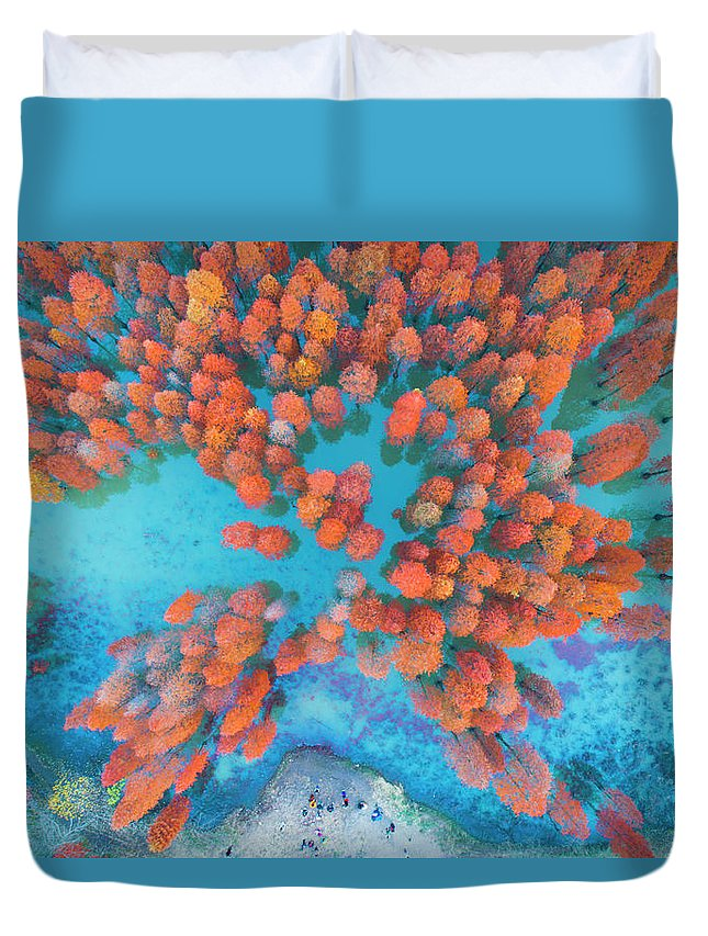Tranquility Duvet Cover featuring the photograph Aerial Drone View With Fir Tree Fall by Yaorusheng