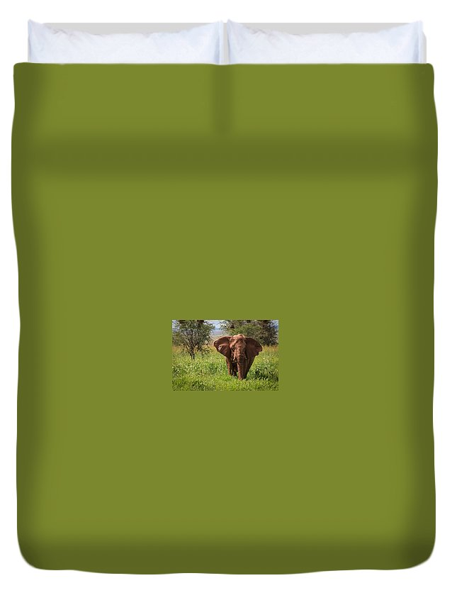 Namibia Duvet Cover featuring the photograph African Desert Elephant by Gregory Daley MPSA