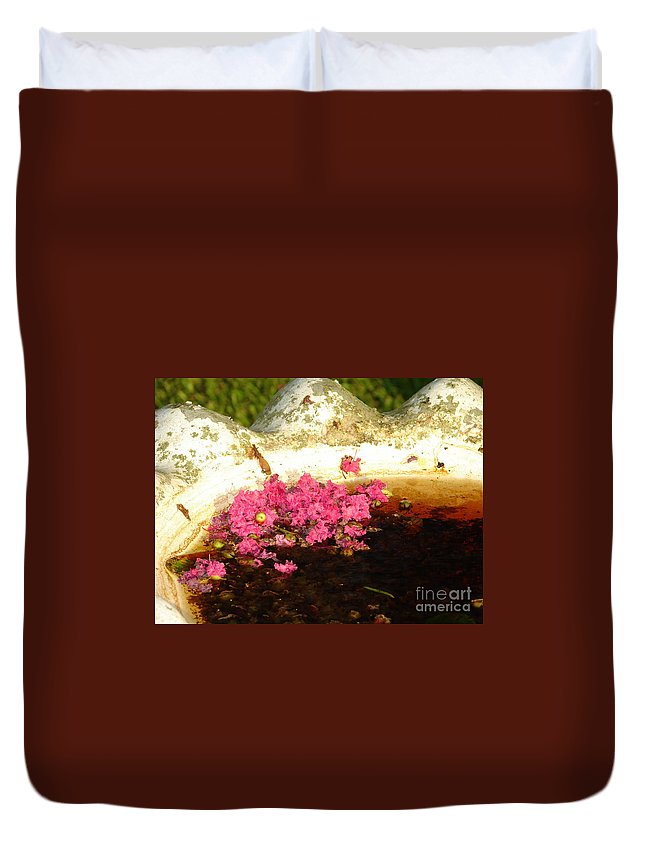 Plants Duvet Cover featuring the photograph After Bloom by Lew Davis