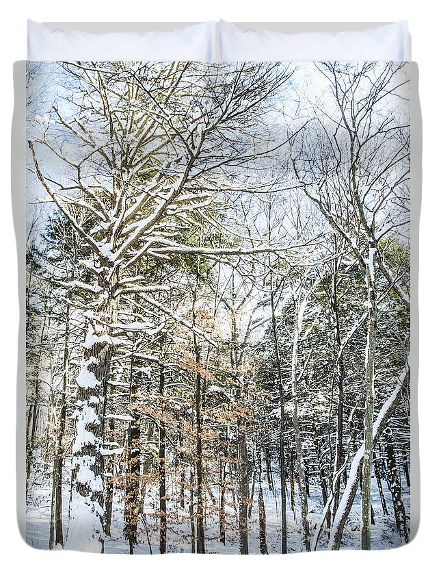 Snow Duvet Cover featuring the photograph After The Storm by Jonathan Steele