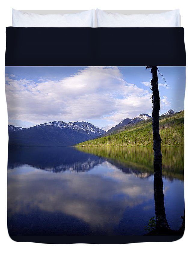 Nature Duvet Cover featuring the photograph Afternoon Light by Chad Dutson