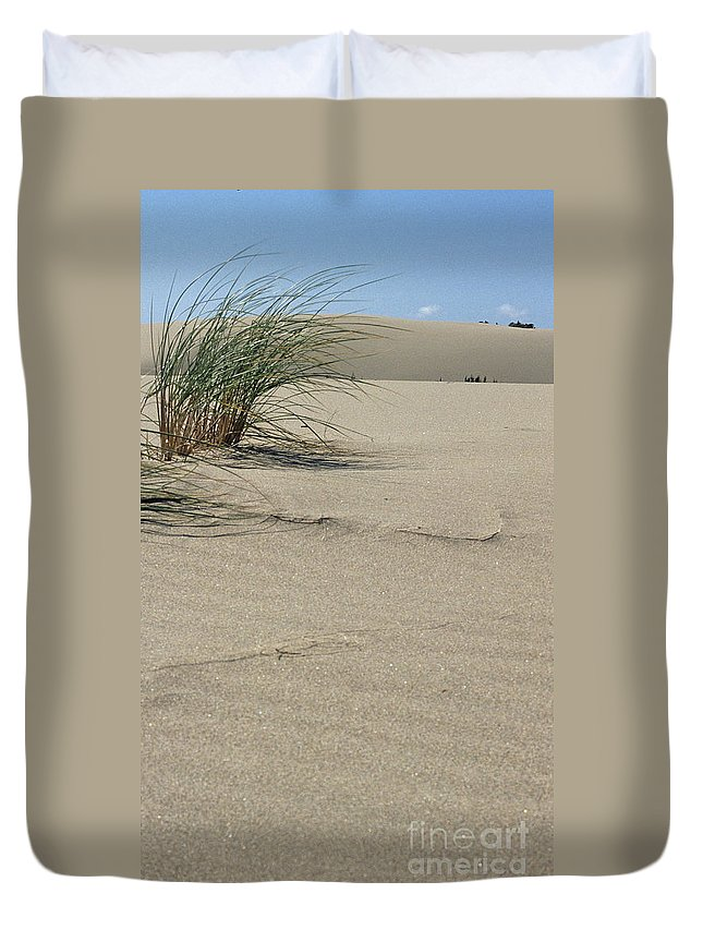 Dunes National Park Duvet Cover featuring the photograph Afternoon Light by Sharon Elliott