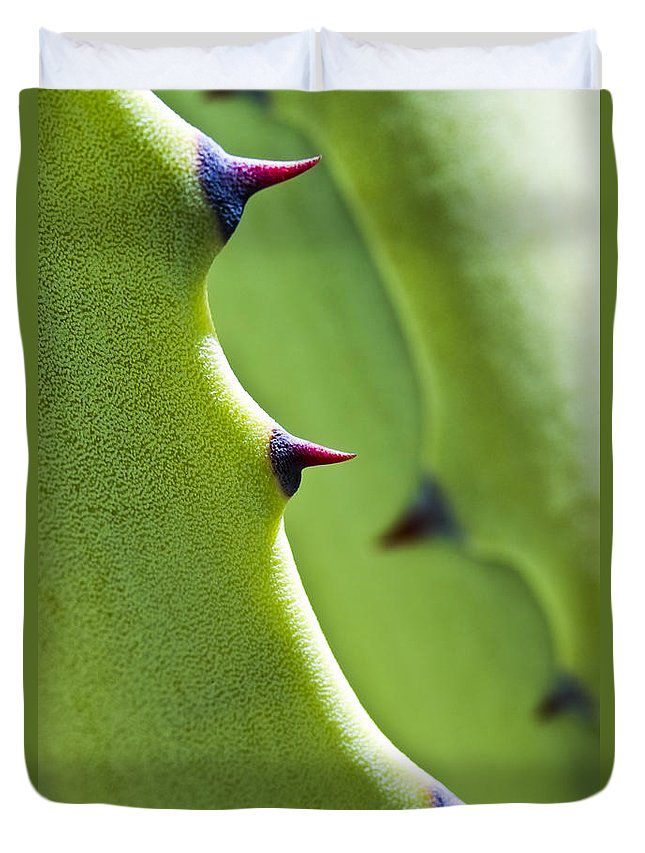 Leaf Duvet Cover featuring the photograph Agave Study by Heiko Koehrer-Wagner