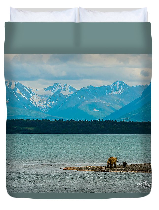Alaska Duvet Cover featuring the photograph Alaskan Grizzly And Spring Cub by Joan Wallner