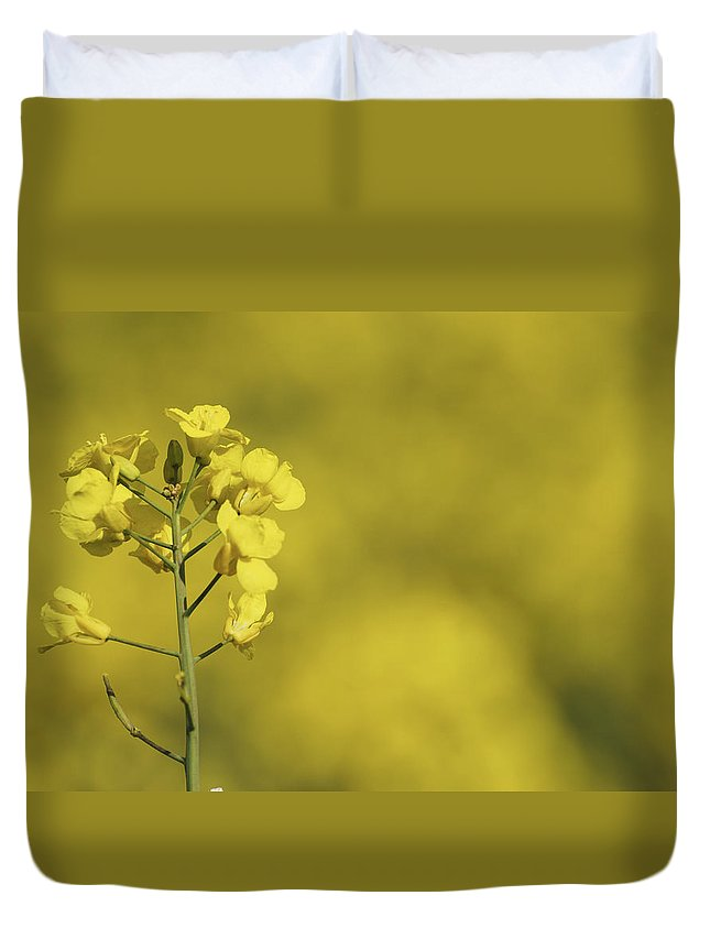 Rapeseed Duvet Cover featuring the photograph All Across The Land 6 by Wendy Wilton