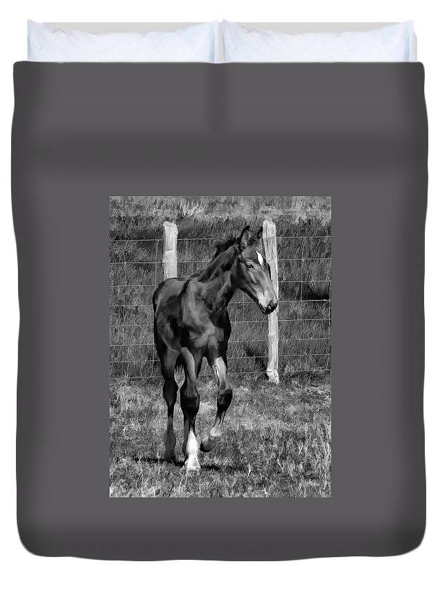 Horse Duvet Cover featuring the photograph All Legs Monochrome by Steve Harrington