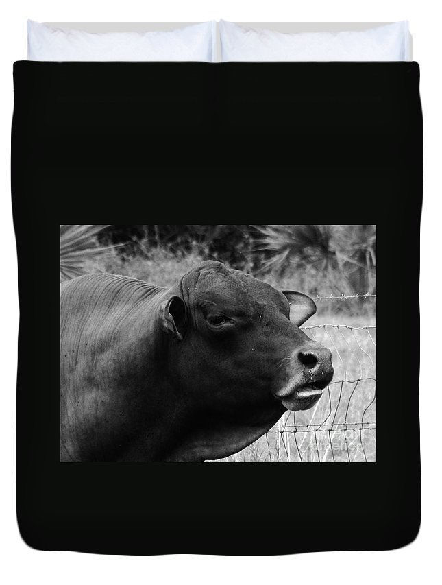 Brahma Duvet Cover featuring the photograph All Mixed Up by Keri West