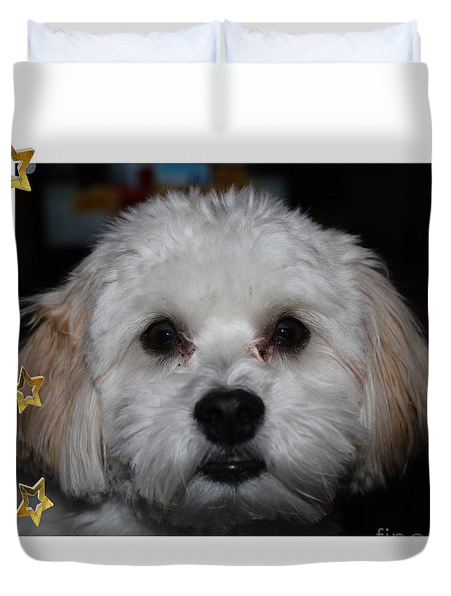 All Star Yoshi Duvet Cover featuring the photograph All Star Yoshi by Barbara Griffin