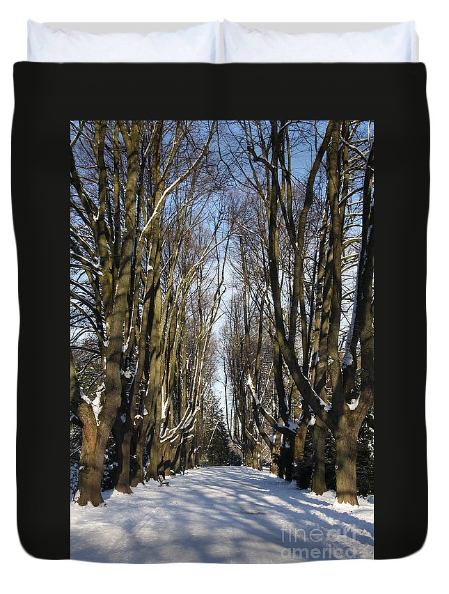 Trees Duvet Cover featuring the photograph Alley In The Snow by Christiane Schulze Art And Photography