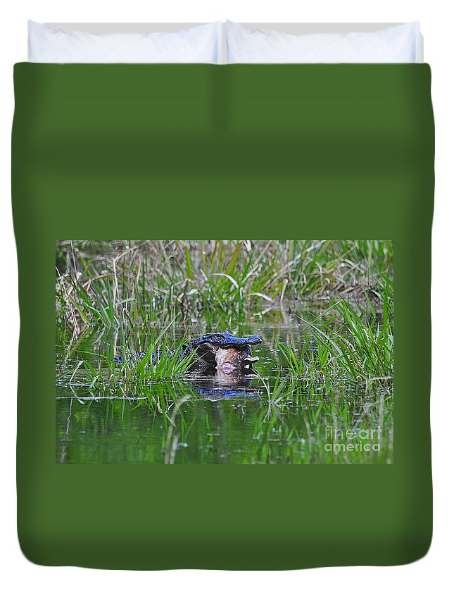 Alligator Duvet Cover featuring the photograph Alligator Appetite by Al Powell Photography USA