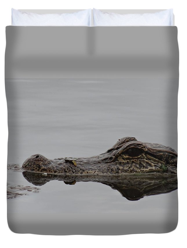 Alligator Duvet Cover featuring the photograph Alligator Eyes by Dan Sproul