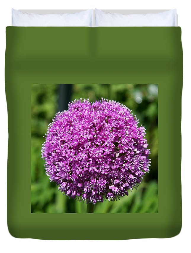 Allium Duvet Cover featuring the photograph Allium Globe by Christiane Schulze Art And Photography